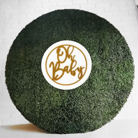 Oh Baby Hoop Sign with Backing